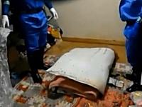特殊清掃「孤独死の現場」腐敗した遺体痕の処理を行う特殊な清掃業務。