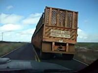 超絶に長いトレーラーを追い越しする動画と無理な追い越しでピンチった動画