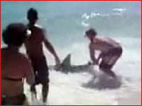 サメを素手で捕まえる男!