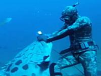 魚突きでお魚ゲット⇒巨大魚が襲ってきてダイバーの手ごとパクッっと・・・。