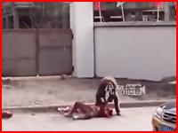 あまりにも惨い・・・。精神異常者が通りすがりの親子をめった刺しに。中国