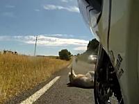 世界207ヶ国ある中でたった一つの国でしか起こり得ない事故の映像。車載。