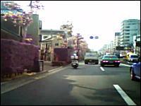 これはカワイソス(´・д・`)急に停車するタクシーにぶっ飛ばされるチャリンコ