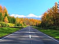 まるで絵画のような美しさ。日本にもこんな美しい風景があったんだ(道路)