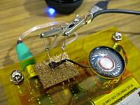 ゴキブリの脚に電極を刺して音楽に合わせてピクピクさせてみた動画。微グロ